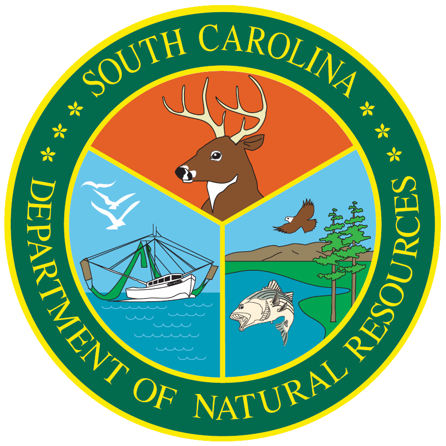 Department of Natural Resources(DNR) logo