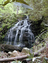 Waterfall at Jocassee