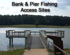 Bank & Pier Fishing Access Sites