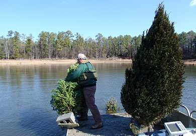 Let Christmas trees benefit fish and wildlife after the holidays