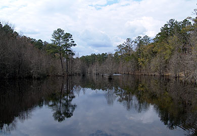 Skinface Pond at Crackerneck WMA