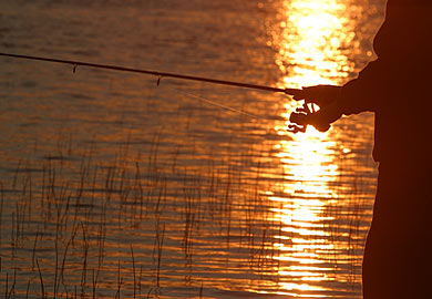 Renew your state hunting and fishing license for Minnesota fishing license age