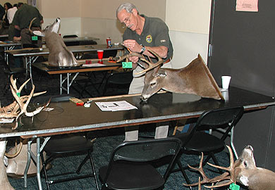 A major part of the antler measuring process takes place during the Palmetto Sportsmen's Classic, located at the State Fairgrounds March 24-26.