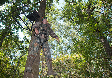 Tree stand safety harness
