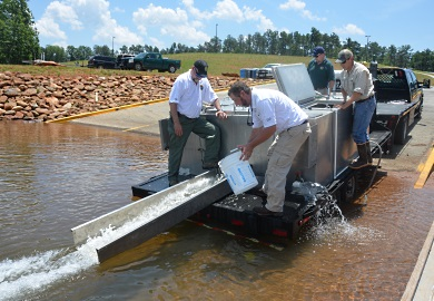 DNR staff release 20,000 striped bass fingerlings into Lake Hartwell June 3 at Green Pond Landing and Event Center in Anderson County. From left are DNR staff Ross Self, Brian Groomes, Dan Rankin and Jared Breaux. (DNR photo by Greg Lucas)