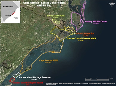 El sitio RHRAP (WHSRN por sus siglas en inglés) de la Región Cape Romain - Santee Delta incluye una cantidad de propiedades privadas, estatales y federales.