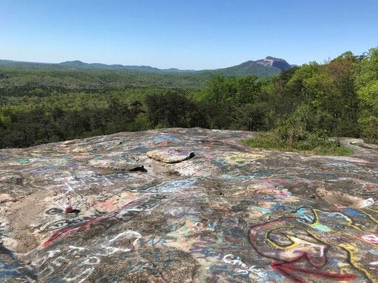 La Reserva de Patrimonio Bald Rock, en la primavera. (Foto SCDNR)