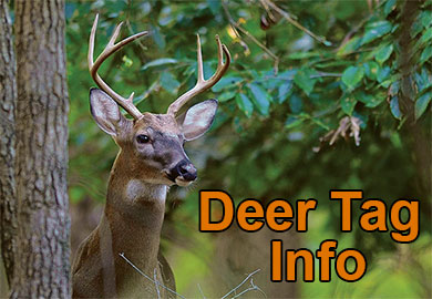 New Deer Tag Information for 2017 Season