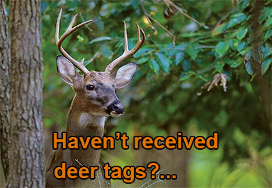 Haven't received deer tags, click here