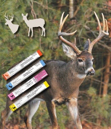 Hay cambios importantes en el sistema de etiquetado para venados sin astas, de los cuales los cazadores deben estar enterados antes de ir de cacería.