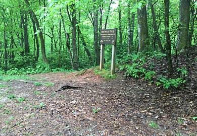 Carolina del Sur cuenta con muchas áreas donde es posible apreciar la naturaleza.