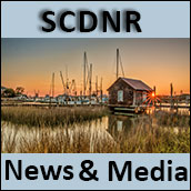 SCDNR News and Media
