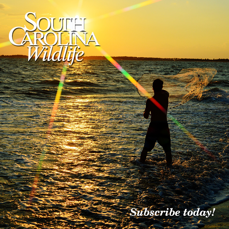 Happy 65th birthday South Carolina Wildlife magazine! Thank you for all the memories and the adventures yet to come!