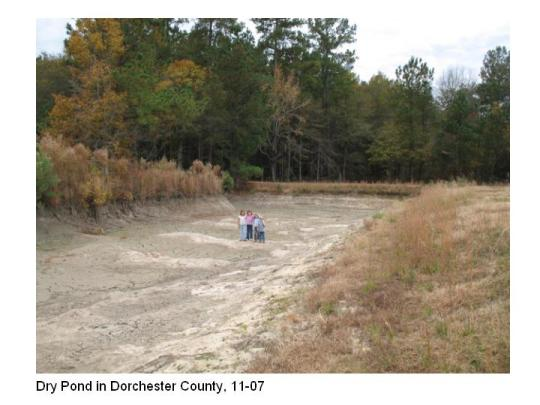Dry Pond in Dorchester County
