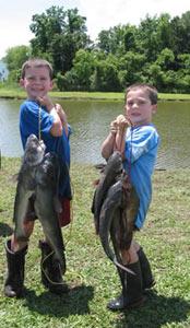 Scdnr environmental education fishing boating for Scdnr fishing license