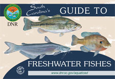 Guide to Freshwater Fishes