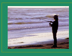 Picture of Person Fishing