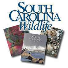 SC Wildlife Magazine