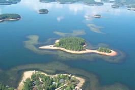 Scdnr aquatic nuisance species program alien invaders 101 for Lifetime fishing license ok