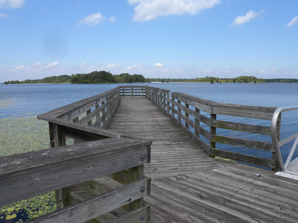 Bank pier access for Lake moultrie fishing