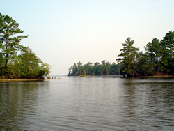 Lakes and waterways for Lake moultrie fishing report