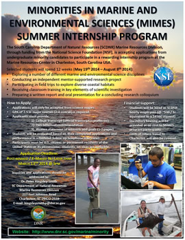 Minority internships