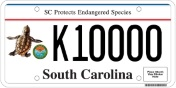Endangered Species Plate (loggerhead sea turtle)